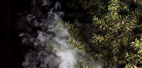 fumaorele-ischia